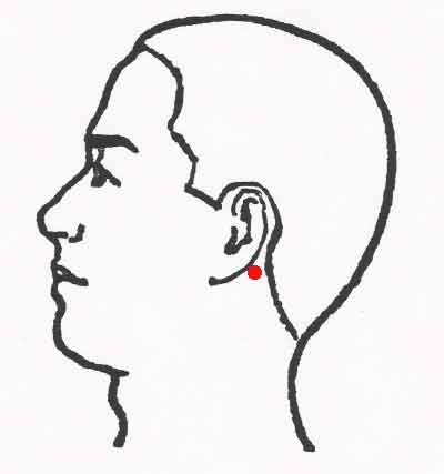 dokko pressure point behind ear