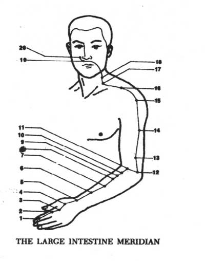 large intestine meridian pressure point chart